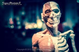 Corpus2012_00JWiley_32